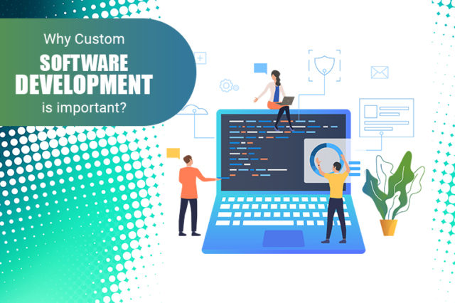 Why Custom Software Development is Important for Your Business?